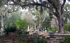 beaufort, south carolina Public Cemeteri, Favorit Place, Cemeteri Bonaventur, Cemeteri Locat, Beaufort Cemeteri, Bonaventur Cemeteri, Dream Vacat, Beauti Bonaventur, Savannah Georgia