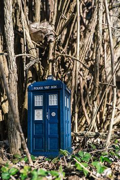 tardis by co