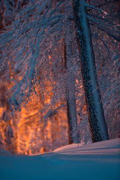 Winter in Franconian Forest, Kronach, Bayern, Germany