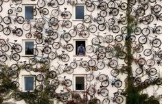 wall photo, bicycles, houses, bike, green wall, shops, facad, germany, bicycle art
