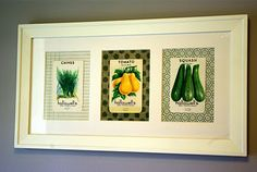 Framed Vintage Seed Packets. Love the papers behind each packet