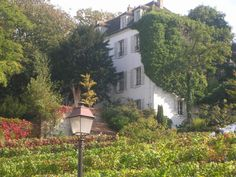 Oldest vineyard in Paris, Montmartre, Paris, shot by Shay Davidson