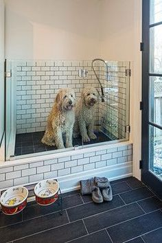 Dog shower!  What an awesome idea if you have space to remodel an extra room.