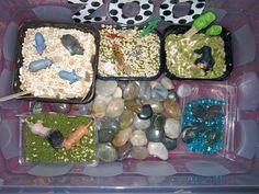 Sensory Box - Zoo from Green Eggs