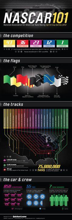 Car Infographics: NASCAR 101 #infographics