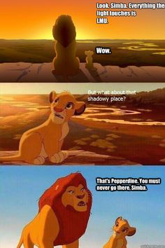 look simba everything the light touches is lmu wow that - Lion King Shadowy Place