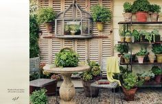 potted garden, potted plants, shutter, patina style