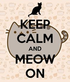 meow, funni, kitti kitti, keep calm