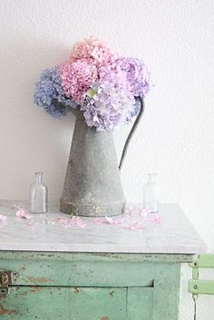 hydrangea in metal bucket