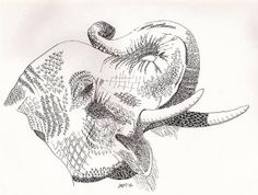 Zentangle Elephant by mazztroop, via Flickr
