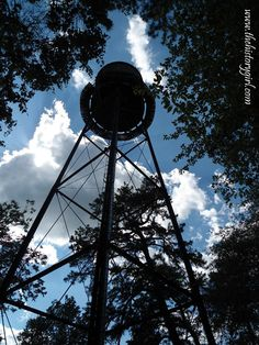 Water tower @ Whitesbog Village, Browns Mills, NJ. Constructed in 1914.