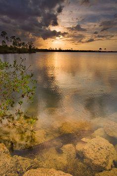 Pineglades Lake, Everglades National Park, Florida (FL), USA