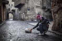 @HistoryNeedsYou: A moment of cat calm amidst the civil war in Aleppo, Syria  #WorldCatDay http://t.co/iaoIMlLcaj