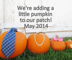 My fall pumpkin pregnancy announcement!