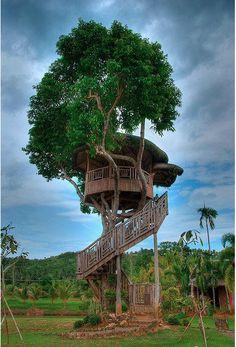 Love a good treehouse