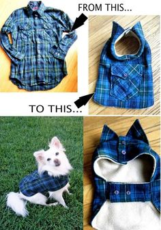 DIY Pet Coat Pattern This belong to fashion right. OMG, too cute. If only I have a pattern shirt to cut away, I would totally put this in my to-do list! :)
