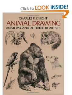 Animal Drawing: Anatomy and Action for Artists (Dover Anatomy for Artists): Charles Knight: 9780486204260: Amazon.com: Books artist dover, 9780486204260, anatomi anim, animal drawings, charl knight, dover anatomi, action, artist bookshelf, anim draw