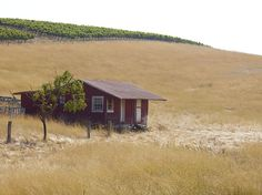 Napa, the way it used to look (and still does in some places).