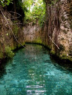 The underground rivers at Xcaret in the Mayan Riviera in Mexico.