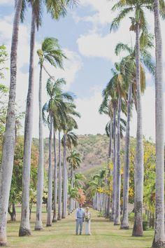 Hawaii wedding / Christina Heaston Photography