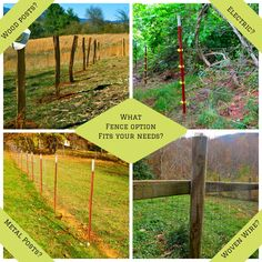 Fence Options on the Farm - The Free Range Life