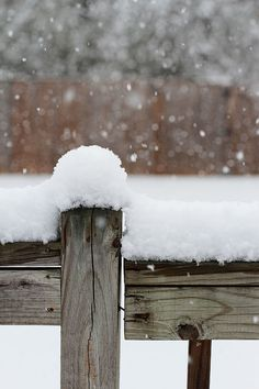 snow on a fence post