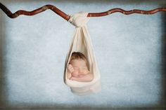 Image of Sling & Hanging Branch Combo