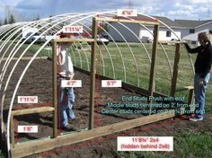 How to build an inexpensive hoop Greenhouse...