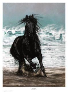Free Spirit - Art Print by Lesley Harrison - art.com