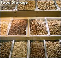 Storage Life of Dried Foods