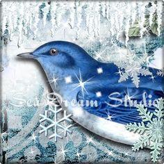 winter, snow blue bird banner in my graphics shop  seadreamstudio.etsy.com