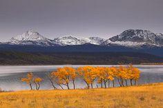 montana lake, beautiful natur, landscap photographi, autumn, beauti place