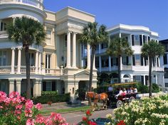 southern hospitality, charleston life, charleston sc, friendliest citi, natural beauty