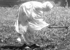 Support Women Farmers in Sudan through Jolkona