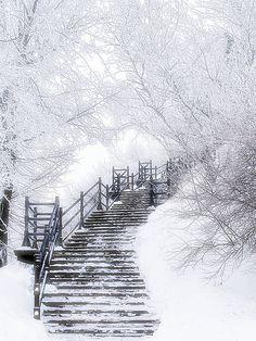 Frost - Brrrr!