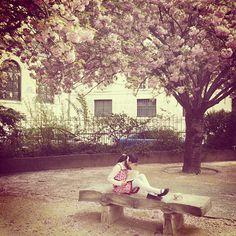 Book bench #Paris