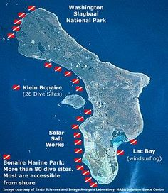 Just got back from diving Bonaire. Incredible, absolutely loved it!!