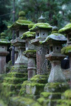 Japanese garden | Mossy stone lanterns