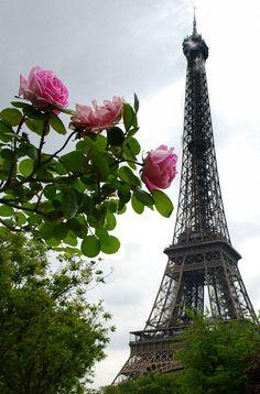 A Rosy Photo of Eiffel