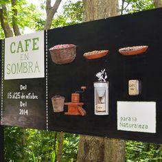 FOTOGALERÍA: Café en