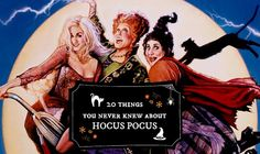 Long live the Sanderson sisters! 20 things you didn't know you wanted to know about Hocus Pocus.
