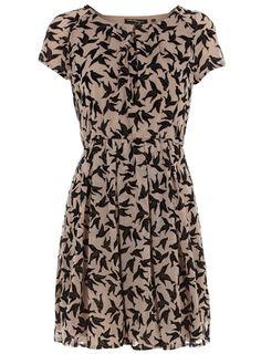 "The new hotness is ""bird print"" ... Dorothy Perkins Mink velour bird dress for $59"