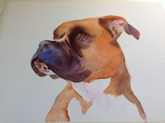 How to paint a pet pet portraits, portrait art, paint