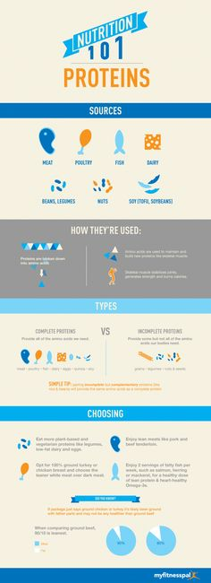 Nutrition 101: Proteins [INFOGRAPHIC]