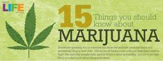 Funny Weed Pictures and Sayings | marijuana - Funny Pictures