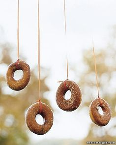 Donuts on a String - fun game alternative to bobbing for apples!