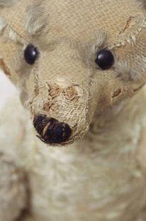 Steiff teddy bear, V