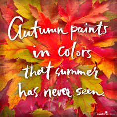 Autumn paints in colors that summer has never seen!