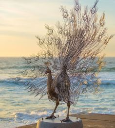Steel Animal Sculptures by Byeong Doo Moon at 'Sculpture by the Sea'  http://www.thisiscolossal.com/2014/10/steel-animal-sculptures-by-byeong-doo-moon-at-sculpture-by-the-sea/
