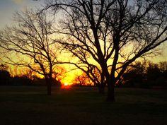 Beautiful sunrise at Hamilton Blvd. Photo taken by Torin Halsey.